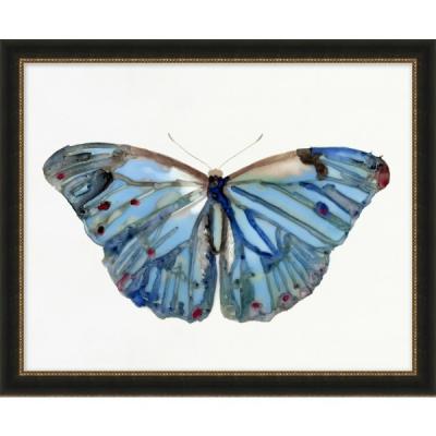 PaintPapillons à l'Aquarelle 5