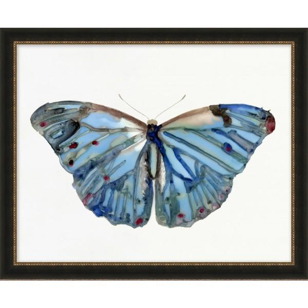 Papillons à l'Aquarelle 5